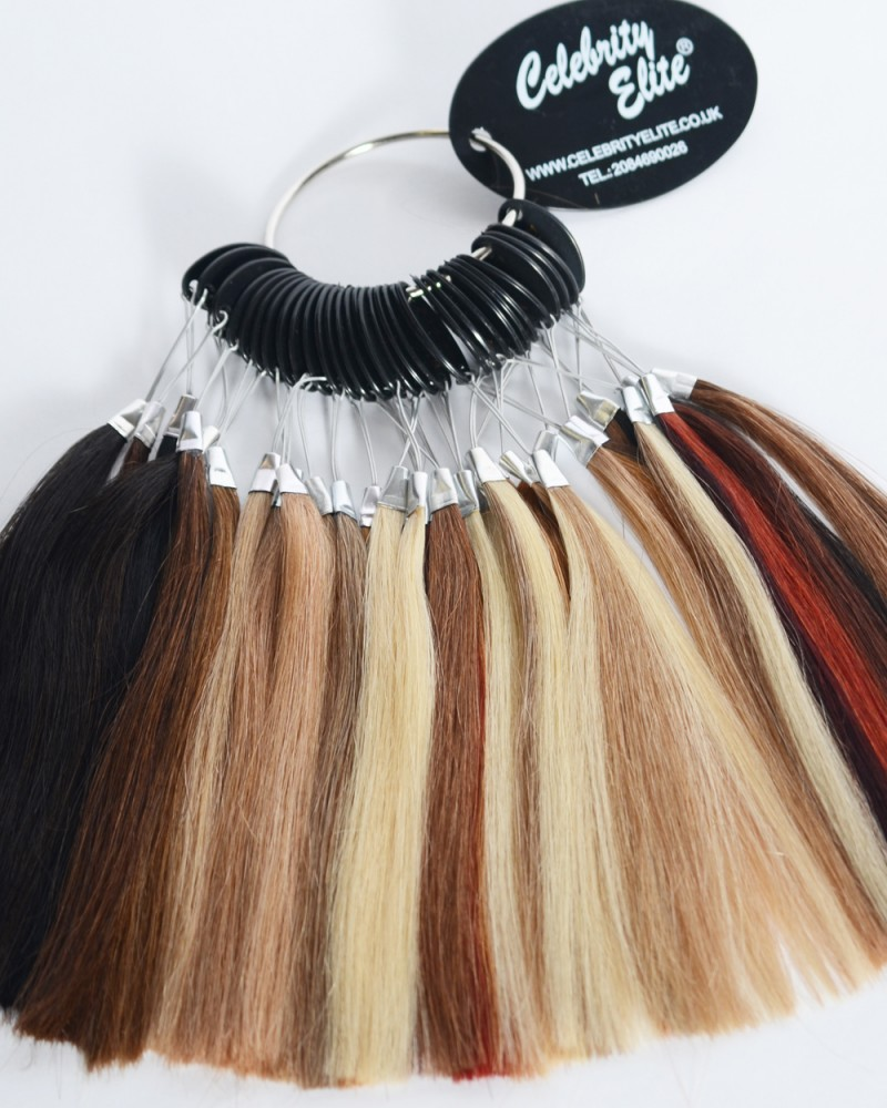 Celebrity elite the ultimate in 100 human hair extensions colour ring loading pmusecretfo Images