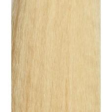 Golden Blonde (24)